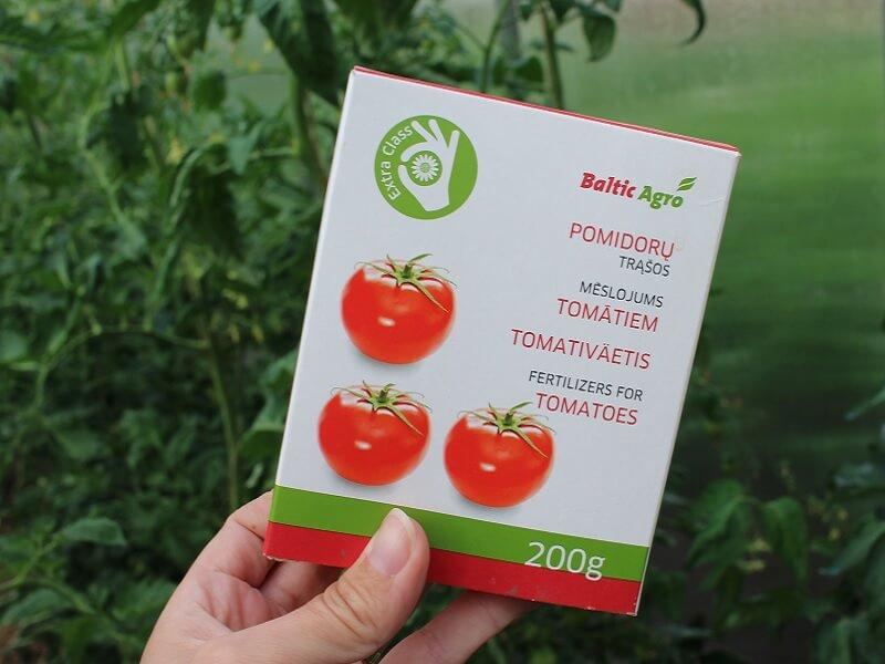 Patariama tręšti kompleksinėmis pomidorų trąšomis. Nuotr. L.Liubertaitė