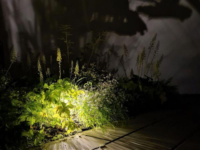 Dailus krūmas, siena už jo ir tinkamas apšvietimas sukuria tikrą šešėlių teatrą! Nuotr. L. Liubertaitė