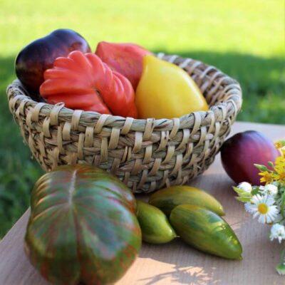 Įdomių veislių pomidorų sėklos: iš kur jų gauti?