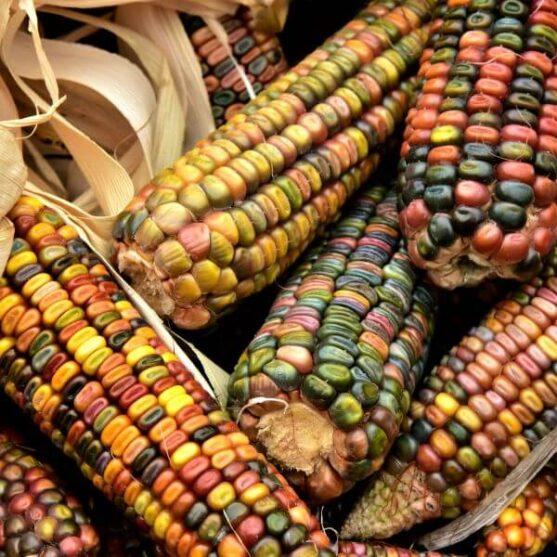 Meksikietiškos daržovės