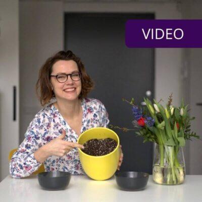 Agro perlitas ir vermikulitas: kuo skiriasi ir kada naudoti