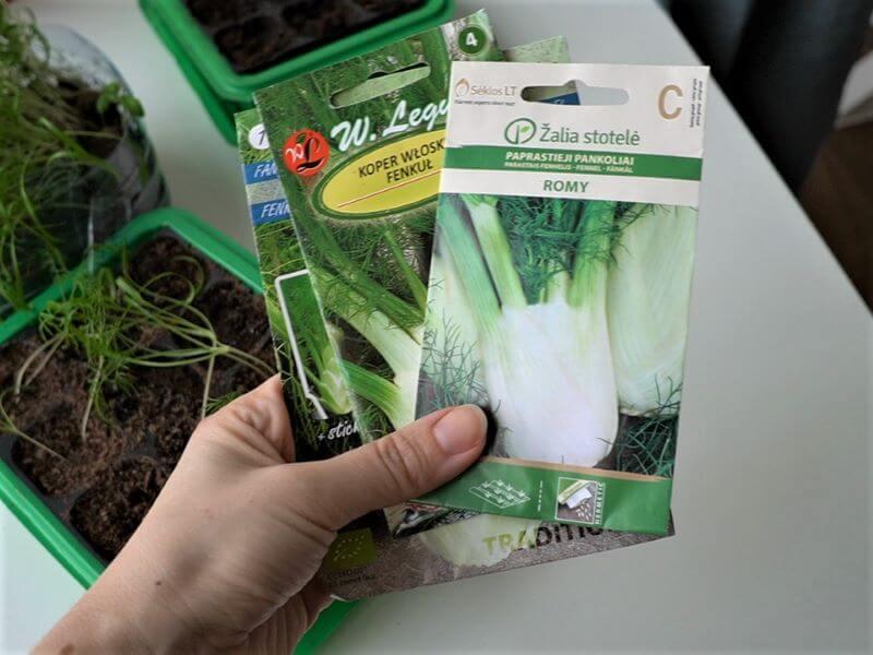 Pankolių auginimas: sėklų įvairovė. Nuotr. L. Liubertaitė