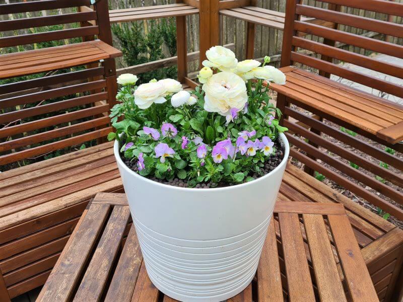 Pavasarinės gėlės vazonuose – štai kokia kompozicija išėjo! Nuotr. L. Liubertaitė