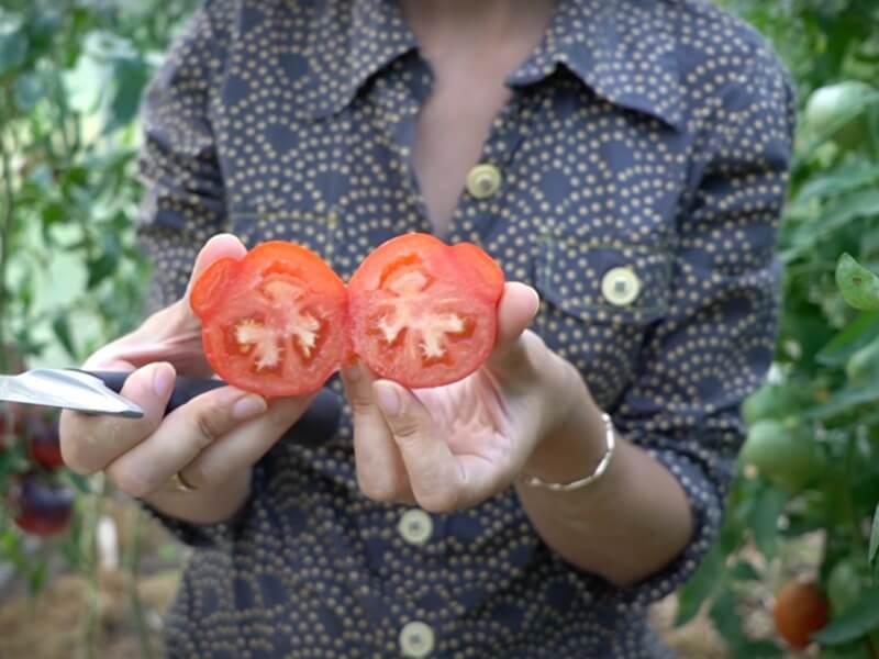 'Paberžės raudonieji' — vieni iš šių metų derliaus favoritų. Nuotr. Lina Liubertaitė