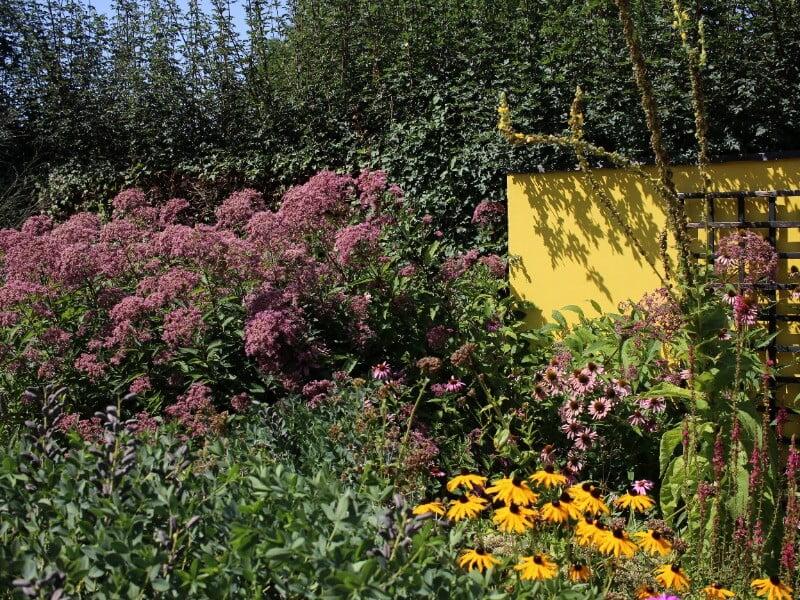 Apželdinimo tendencijos: spalvingas gėlynas Appeltern soduose (Nyderlandai). Nuotr. Lina Liubertaitė